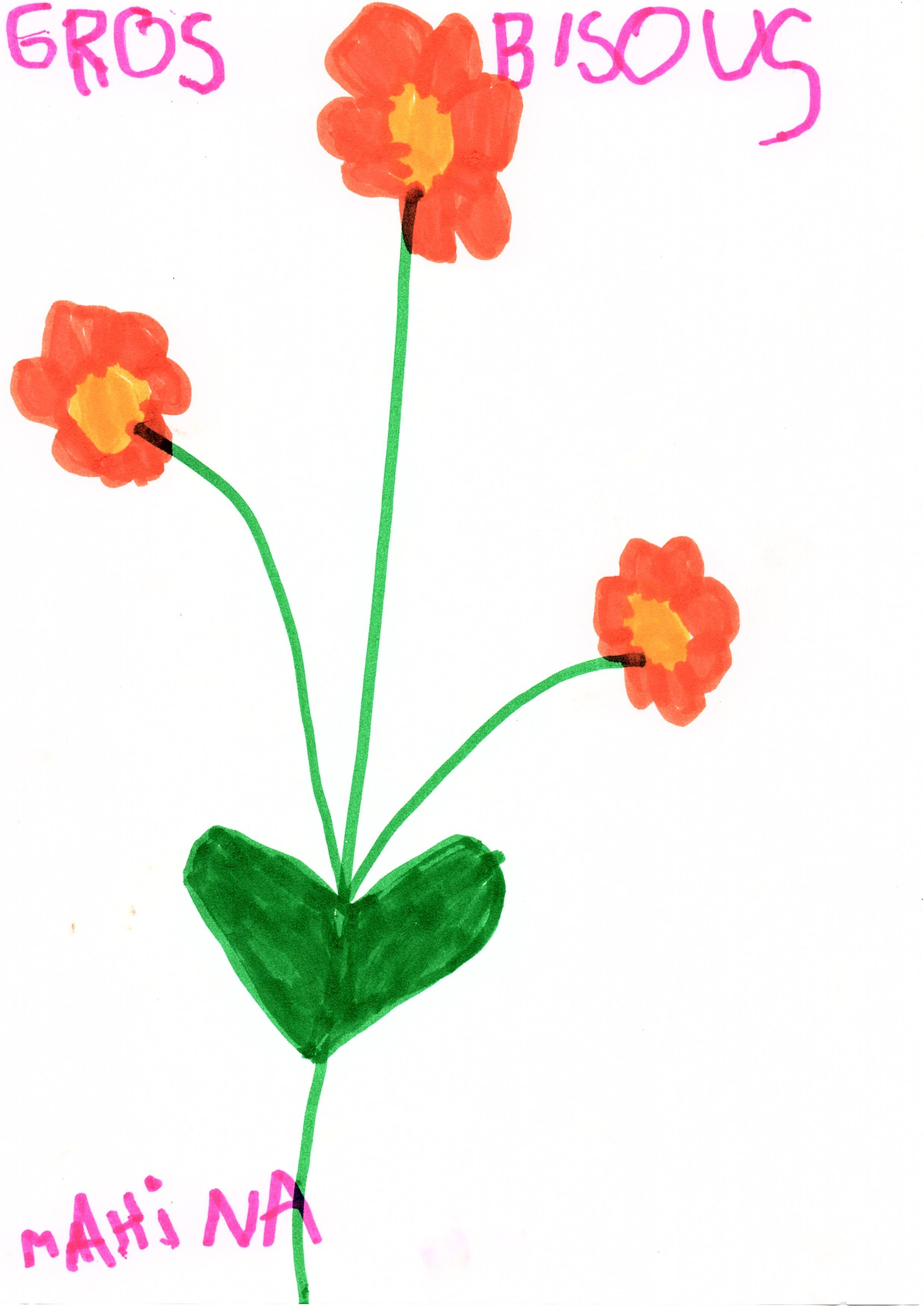fleurs-mahina