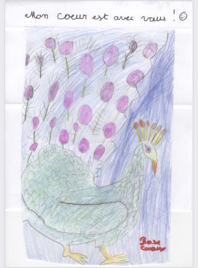 dessin-rose-c-cm1