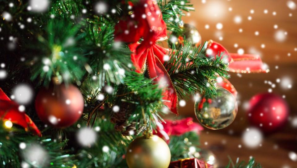 113018-christmas-tree-adobestock_122831287